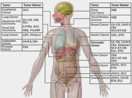 tumor_markers-rew